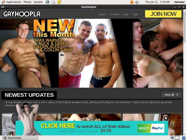 Gay Hoopla Special Offer