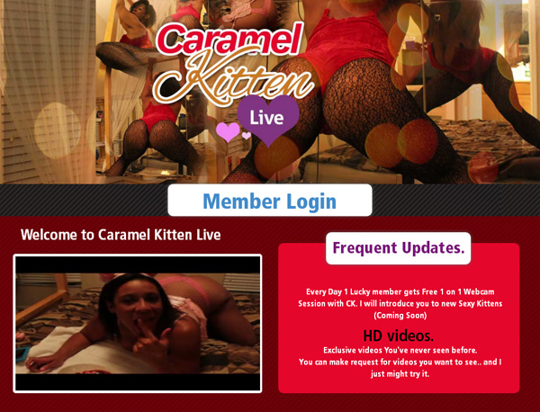 Log In Caramel Kitten Live
