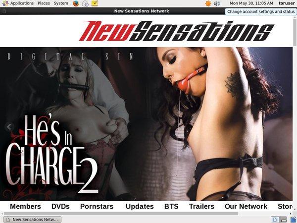 New Sensations New Porn