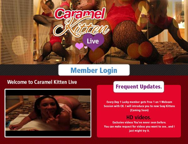 Free Working Caramel Kitten Live Account